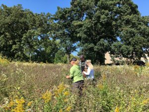 Misha Finney and Vedrana Stanarevic gather seeds from the prairie near Goodnight Hall.
